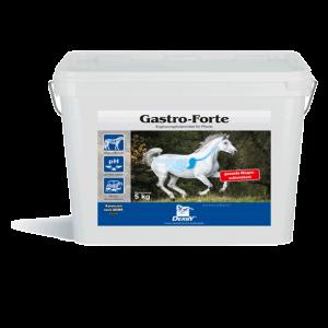 derby_gastro_forte