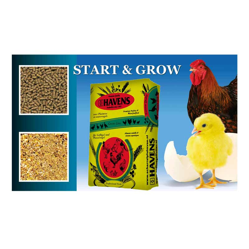 havens_start_grow